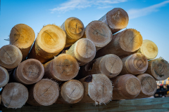 Wood Fence Products from Eastern White Cedar Brand Wood Fence