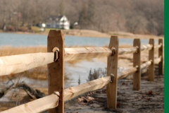 wood-fencing-from-eastern-fence-2